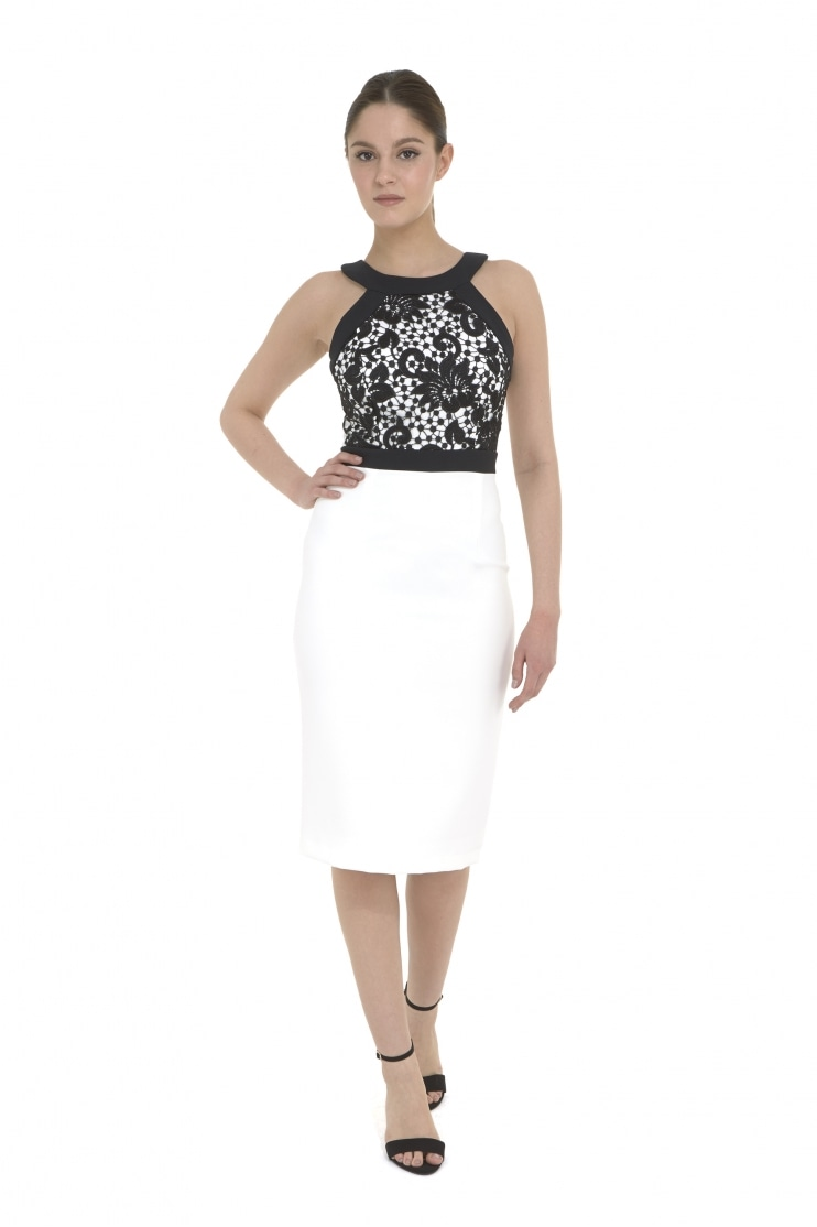 Ayda Guipure Lace Contrast Pencil Dress